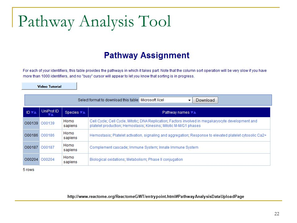 Pathway Analysis Tool 22 http://www.reactome.org/ReactomeGWT/entrypoint.html#PathwayAnalysisDataUploadPage