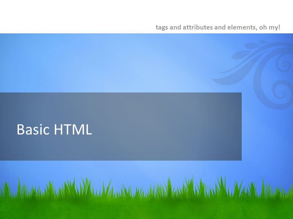 Basic HTML tags and attributes and elements, oh my!