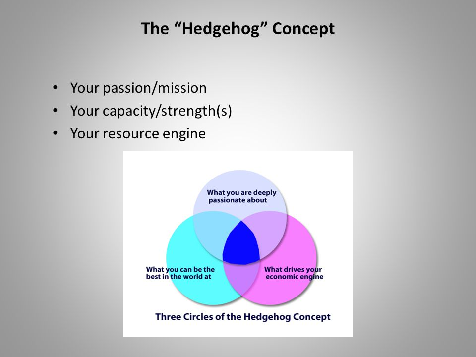 "The ""Hedgehog"" Concept Your passion/mission Your capacity/strength(s) Your resource engine"