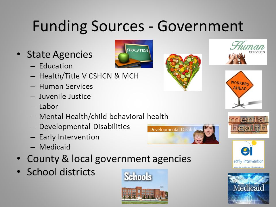 Funding Sources - Government State Agencies – Education – Health/Title V CSHCN & MCH – Human Services – Juvenile Justice – Labor – Mental Health/child