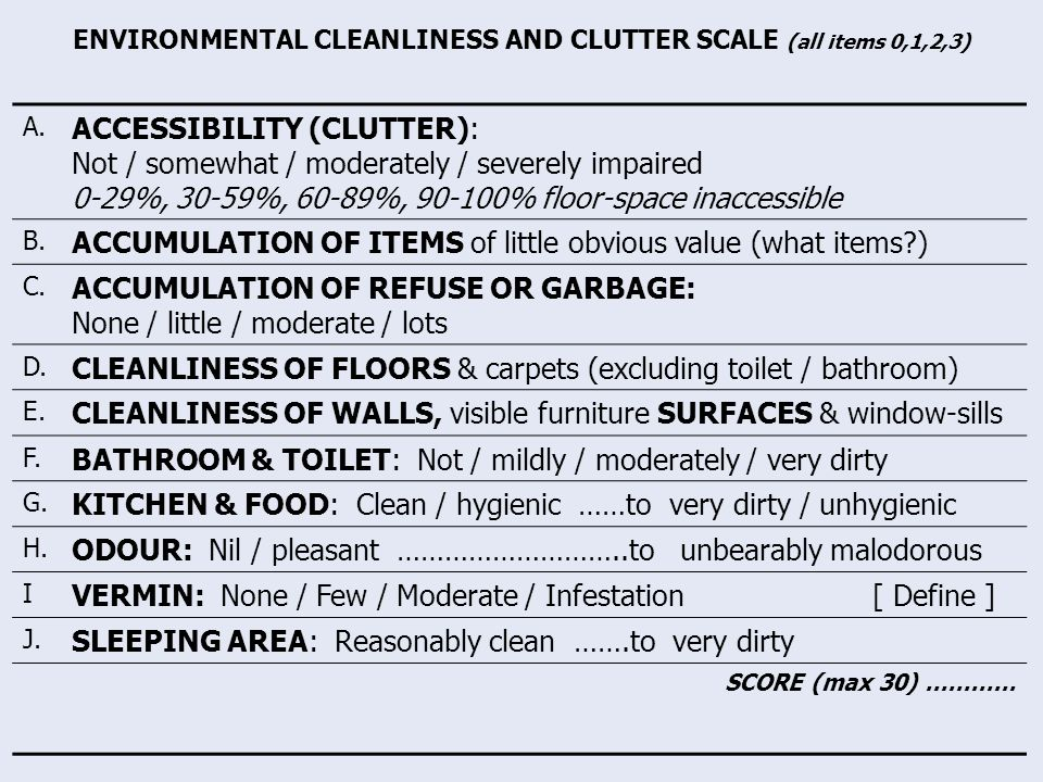 ENVIRONMENTAL CLEANLINESS AND CLUTTER SCALE (all items 0,1,2,3) A.