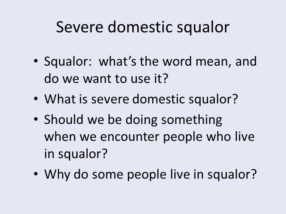 Severe domestic squalor Squalor: what's the word mean, and do we want to use it.