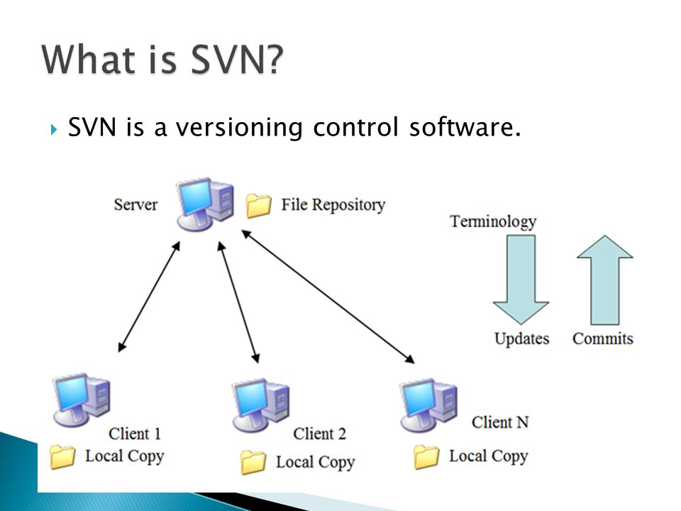  SVN is a versioning control software.