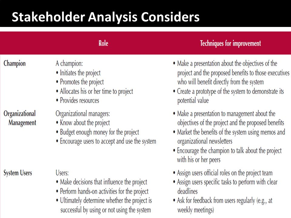 Stakeholder Analysis Considers