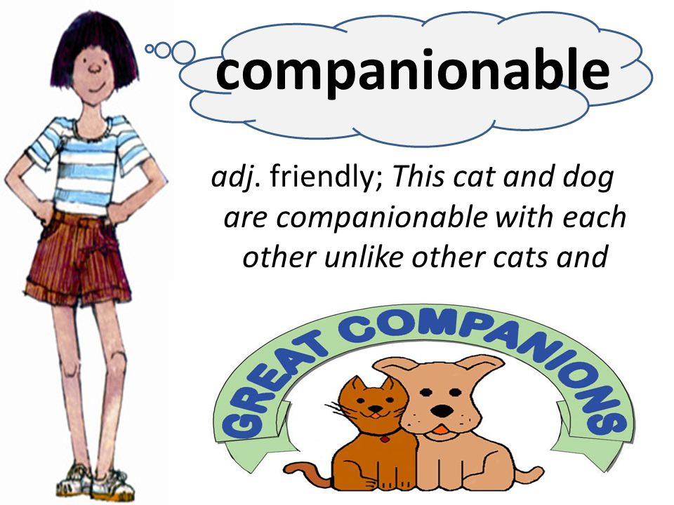 adj. friendly; This cat and dog are companionable with each other unlike other cats and dogs.
