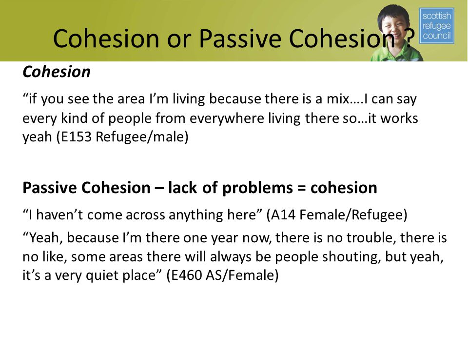 "Cohesion or Passive Cohesion ? Cohesion ""if you see the area I'm living because there is a mix….I can say every kind of people from everywhere living"