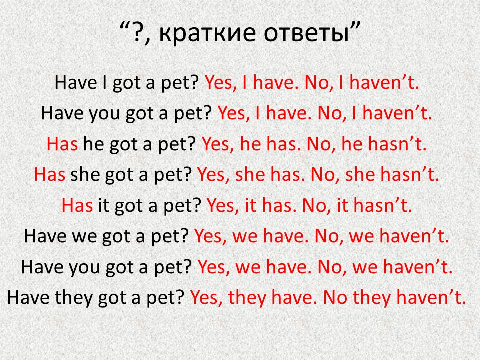 Have got – иметь, обладать + I have got a pet. You have got a pet.
