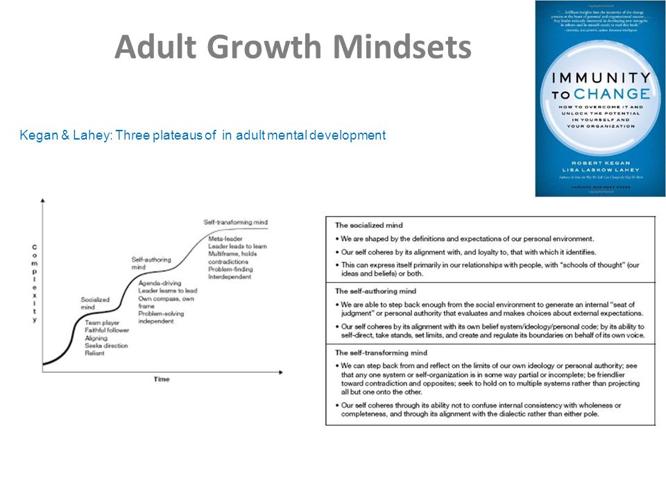 Adult Growth Mindsets Kegan & Lahey: Three plateaus of in adult mental development