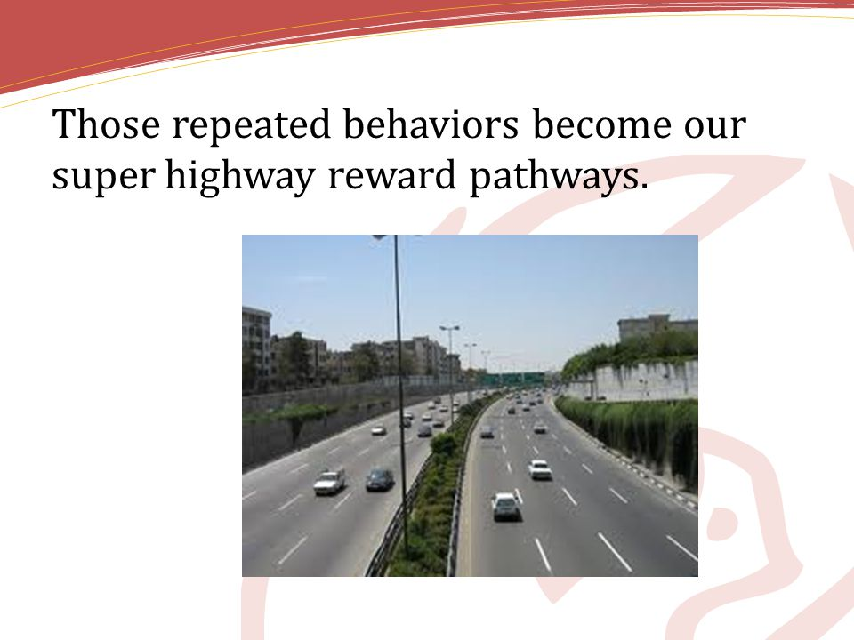 Those repeated behaviors become our super highway reward pathways.