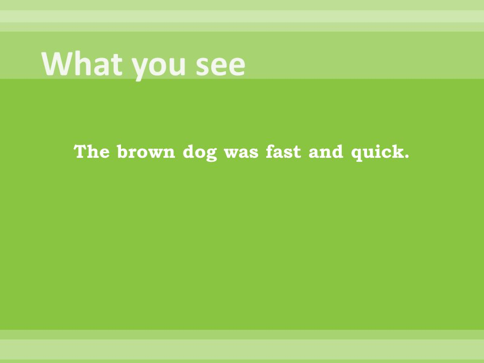 The brown dog was fast and quick.