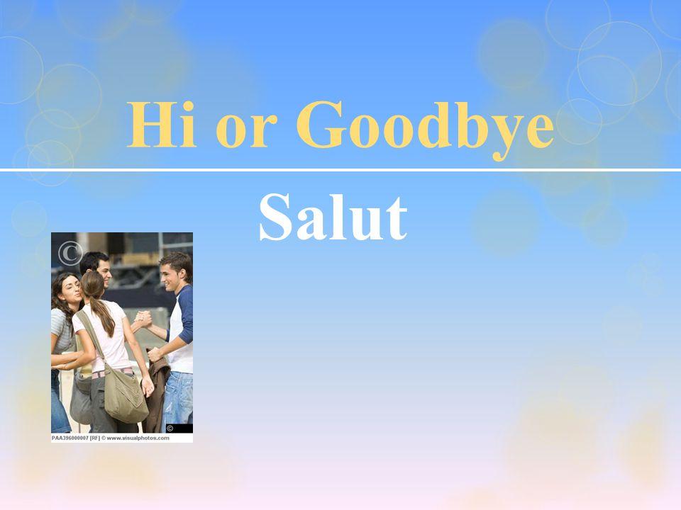 Goodbye Au revoir