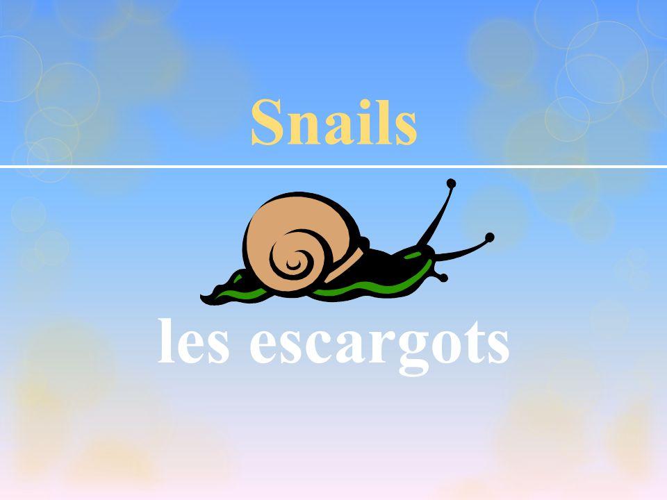 Snails les escargots