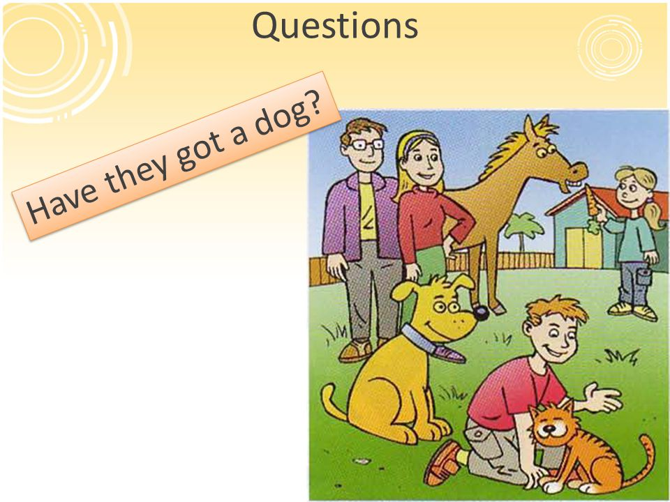 Questions Have they got a dog