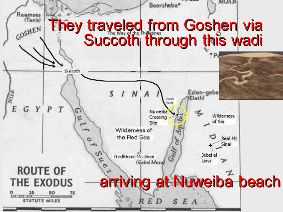 They traveled from Goshen via Succoth through this wadi arriving at Nuweiba beach