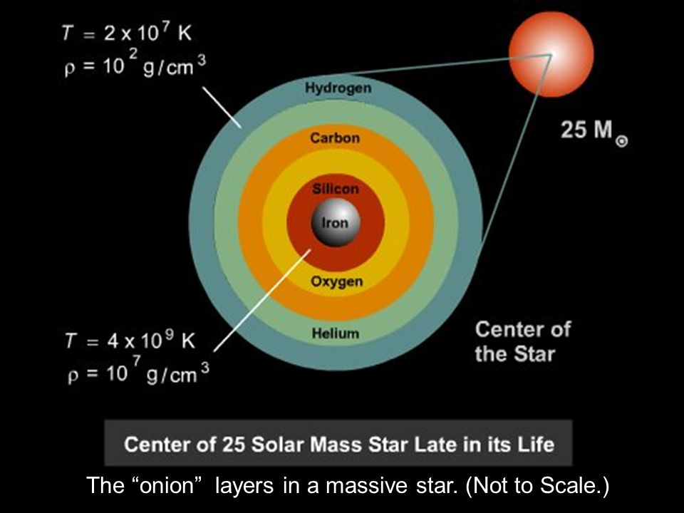 """The """"onion"""" layers in a massive star. (Not to Scale.)"""