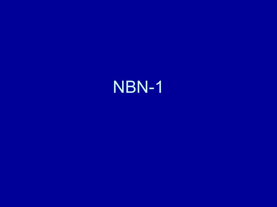 NBN-1
