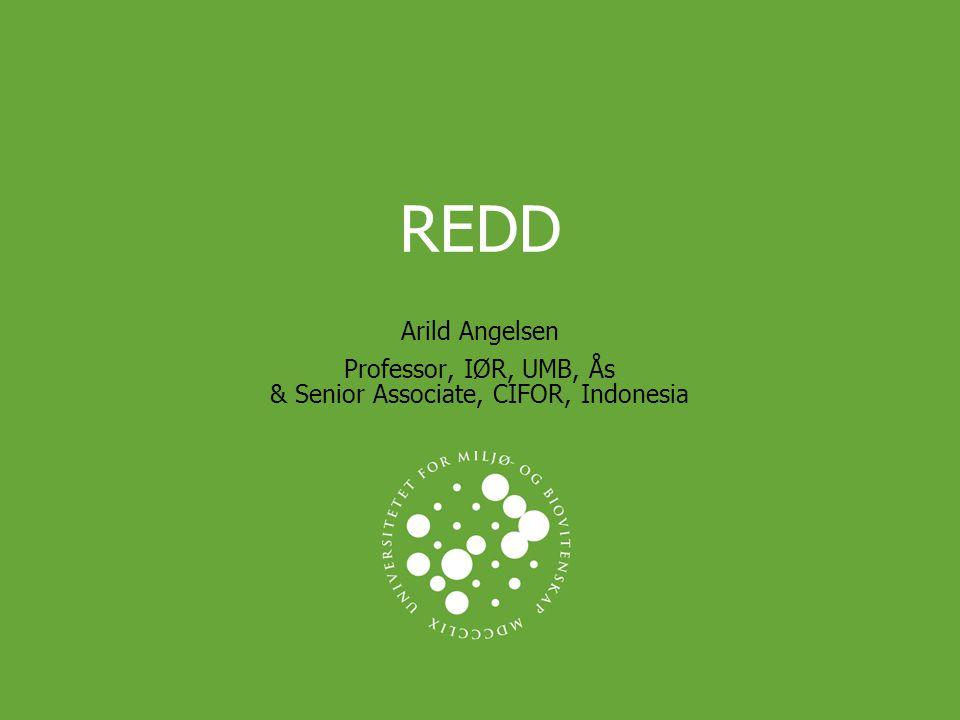 REDD Arild Angelsen Professor, IØR, UMB, Ås & Senior Associate, CIFOR, Indonesia