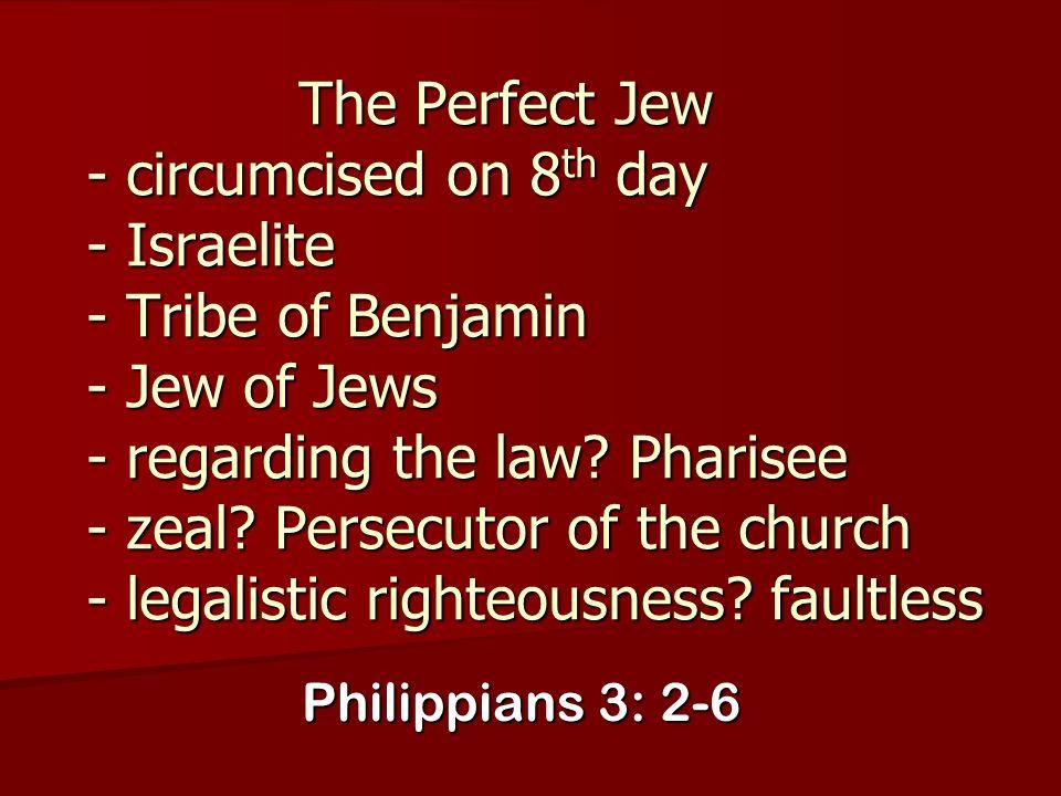 The Perfect Jew - circumcised on 8 th day - Israelite - Tribe of Benjamin - Jew of Jews - regarding the law? Pharisee - zeal? Persecutor of the church
