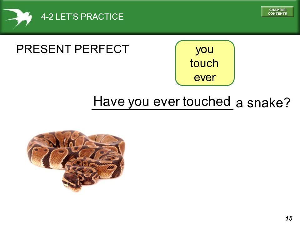15 ___________________ a snake.