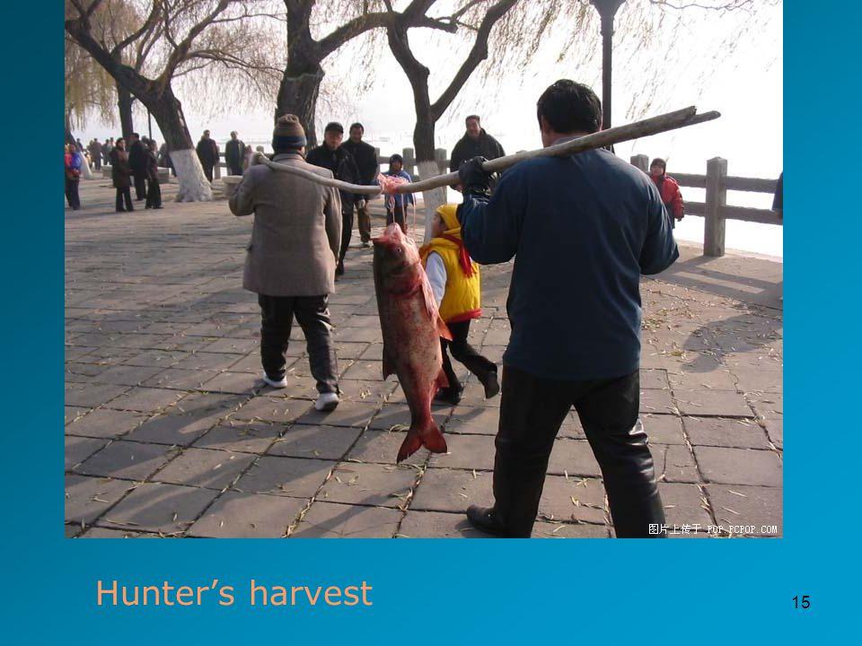 15 Hunter's harvest