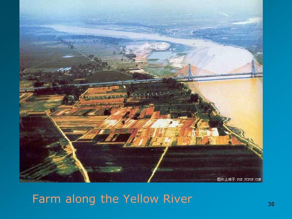 36 Farm along the Yellow River