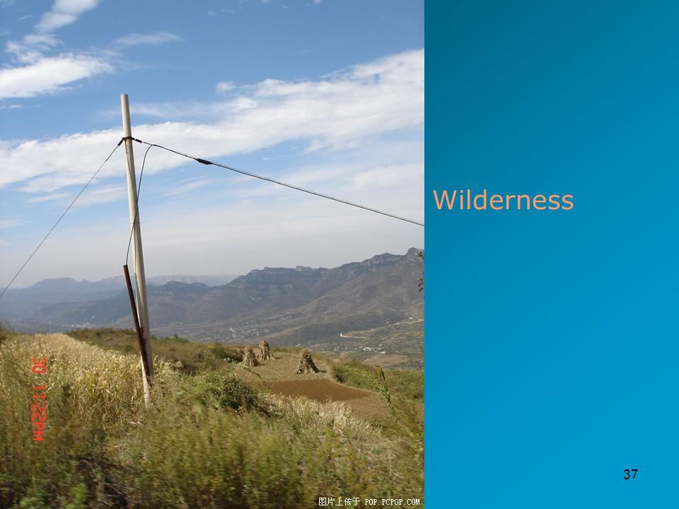 37 Wilderness
