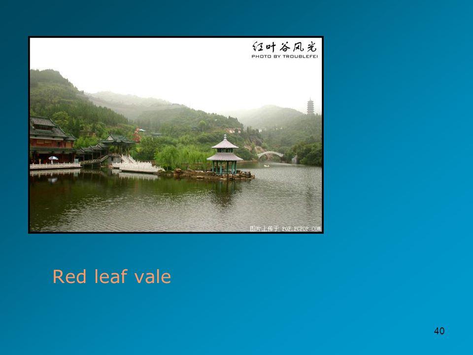 40 Red leaf vale