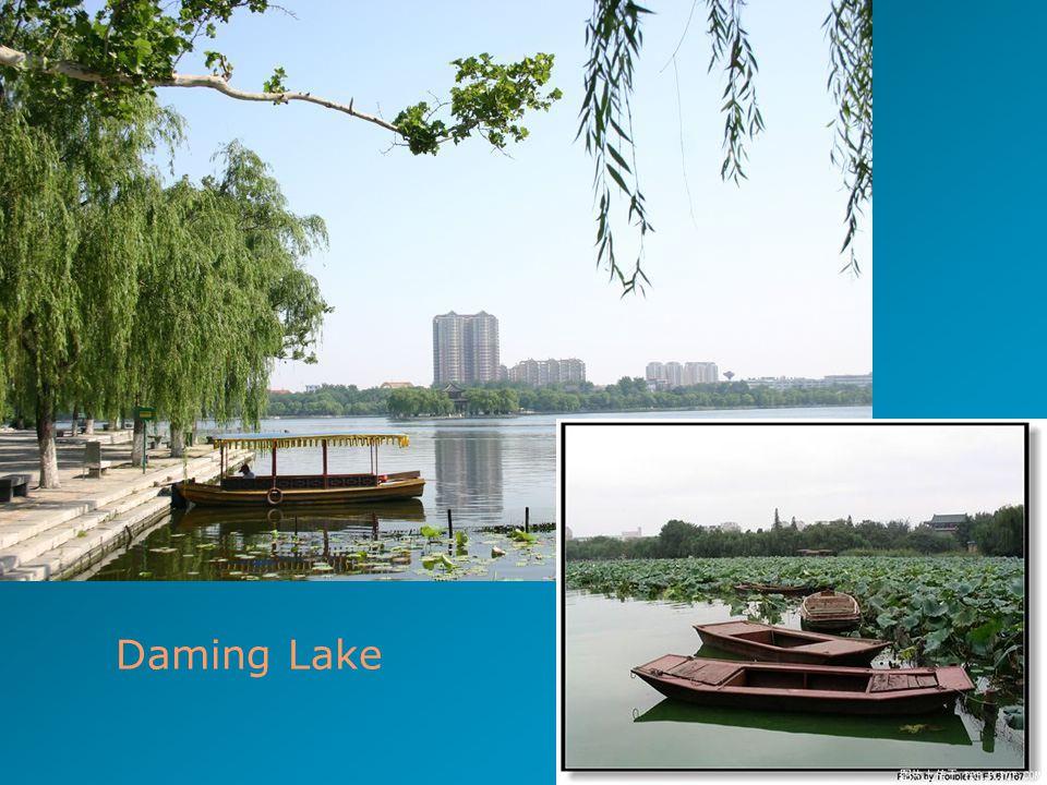 44 Daming Lake