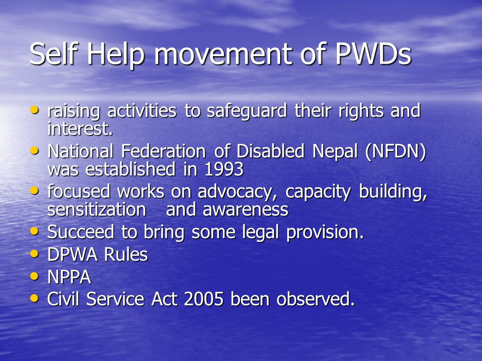Self Help movement of PWDs raising activities to safeguard their rights and interest.