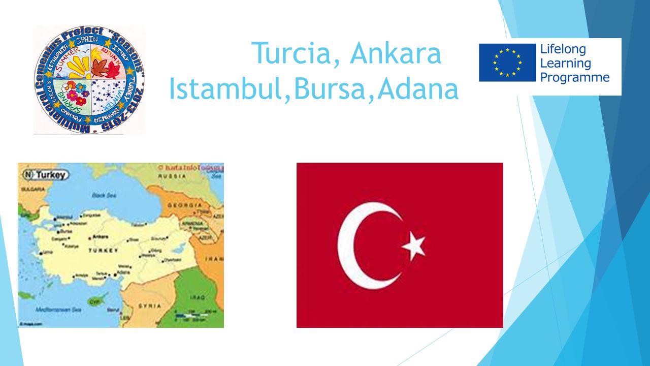 Turcia, Ankara Istambul,Bursa,Adana