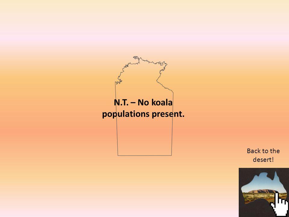 N.T. – No koala populations present. Back to the desert!