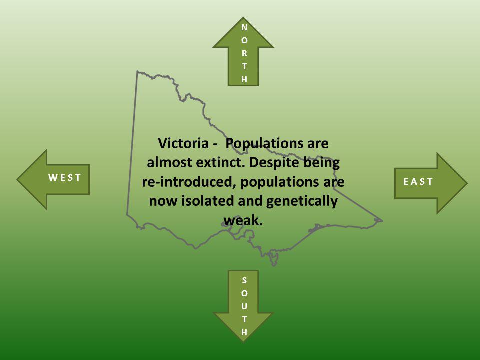 Victoria - Populations are almost extinct.