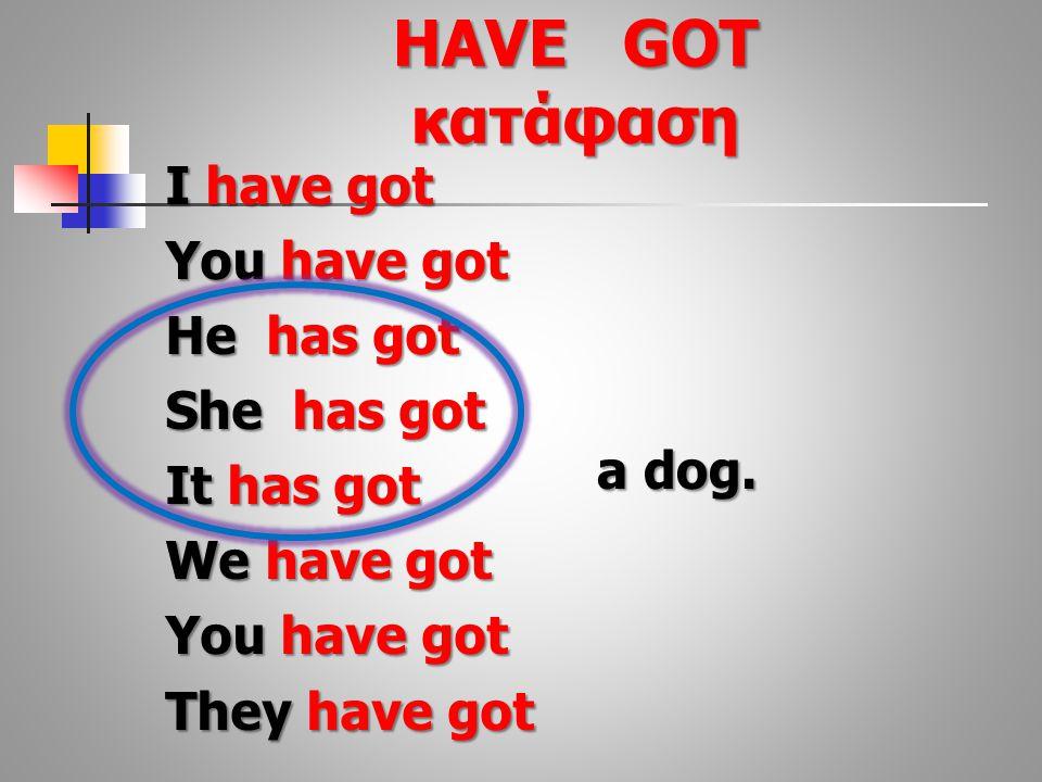 HAVE GOT κατάφαση I have got You have got He has got She has got It has got We have got You have got They have got a dog.