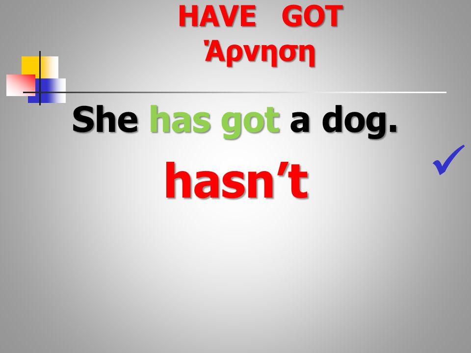She has got a dog. hasn't HAVE GOT Άρνηση