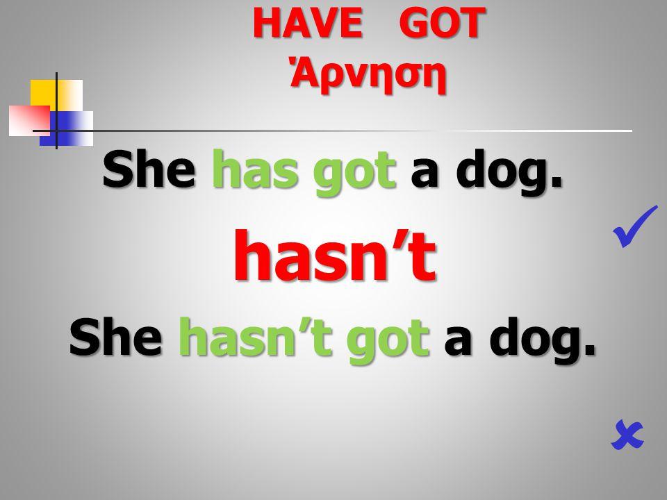 She has got a dog. hasn't She hasn't got a dog.  HAVE GOT Άρνηση