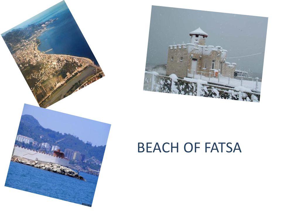 BEACH OF FATSA
