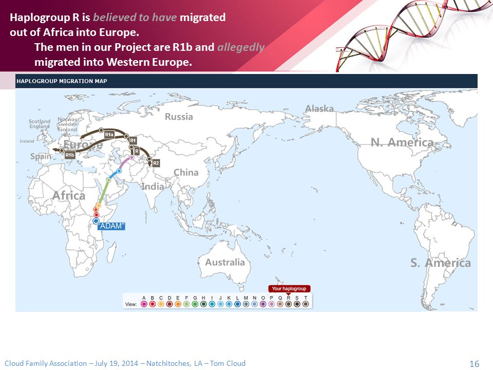 Cloud Family Association – July 19, 2014 – Natchitoches, LA – Tom Cloud 16 Haplogroup R is believed to have migrated out of Africa into Europe. The me