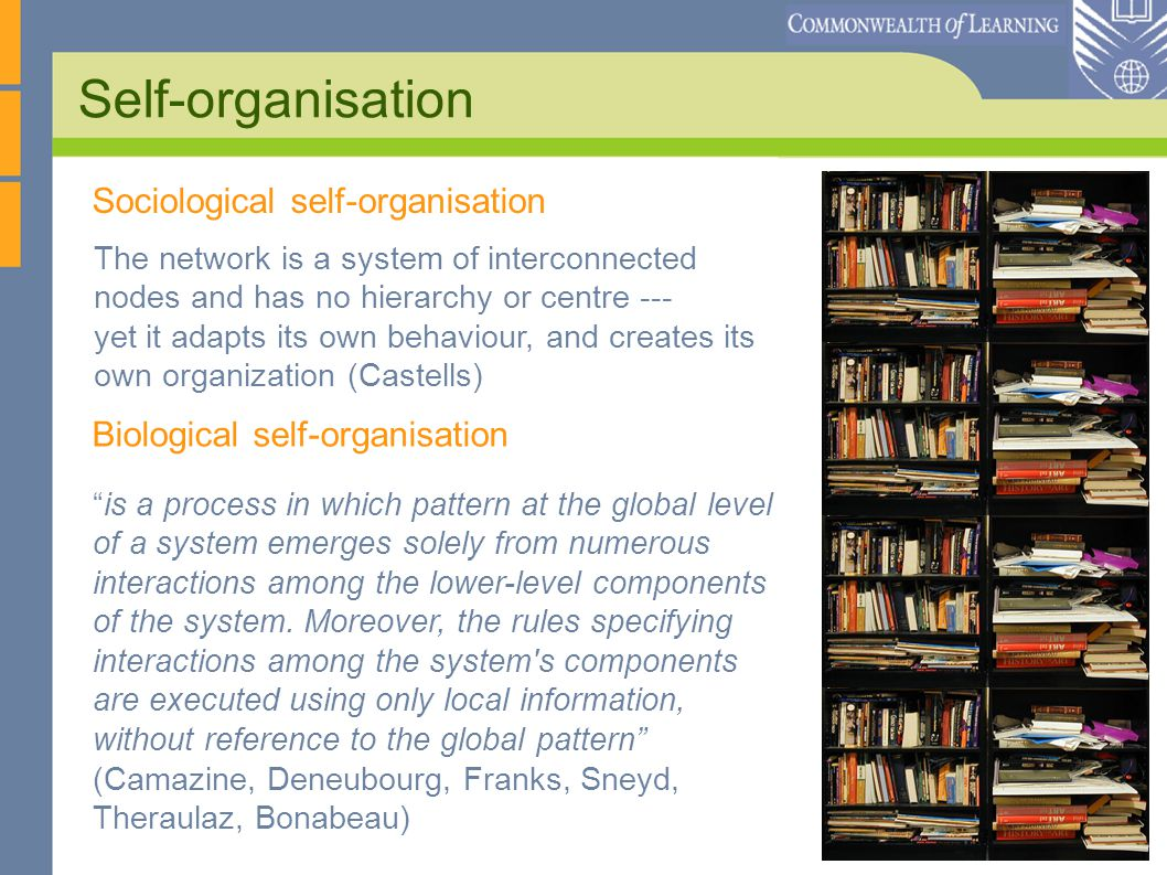 Self-organisation The network is a system of interconnected nodes and has no hierarchy or centre --- yet it adapts its own behaviour, and creates its own organization (Castells) is a process in which pattern at the global level of a system emerges solely from numerous interactions among the lower-level components of the system.