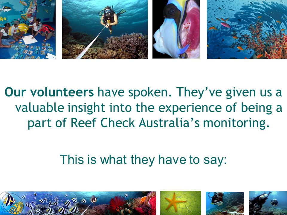 Our volunteers have spoken. They've given us a valuable insight into the experience of being a part of Reef Check Australia's monitoring. This is what