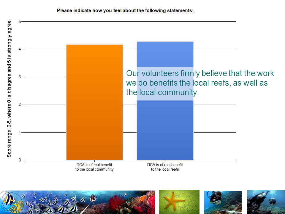 Our volunteers firmly believe that the work we do benefits the local reefs, as well as the local community.