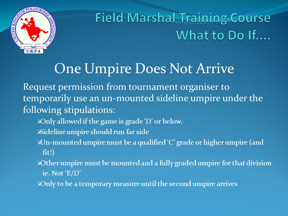 Request permission from tournament organiser to temporarily use an un-mounted sideline umpire under the following stipulations:  Only allowed if the game is grade 'D' or below.
