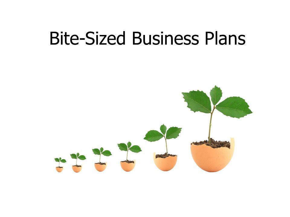 Bite-Sized Business Plans