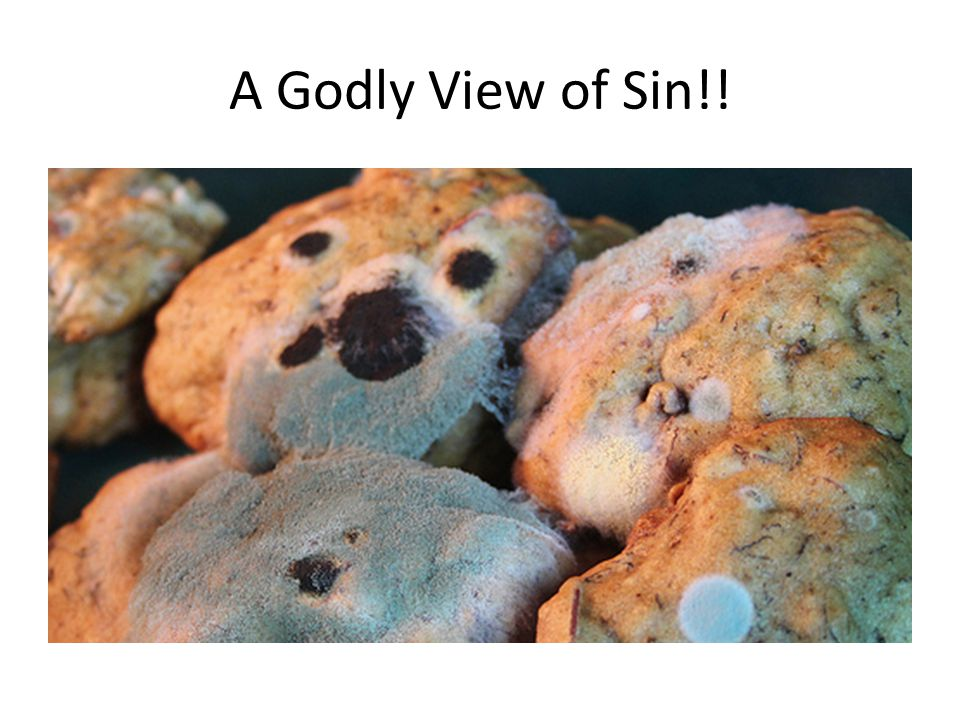 A Godly View of Sin!!