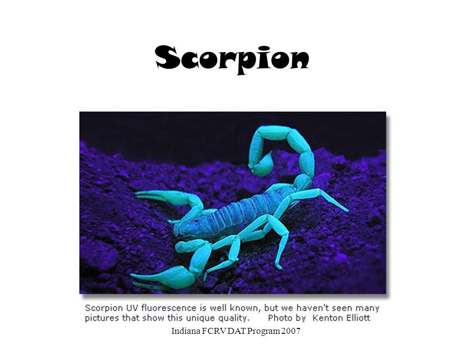 Scorpion Indiana FCRV DAT Program 2007
