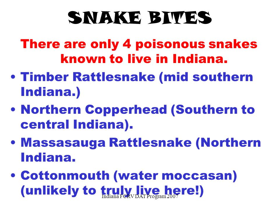 SNAKE BITES There are only 4 poisonous snakes known to live in Indiana.