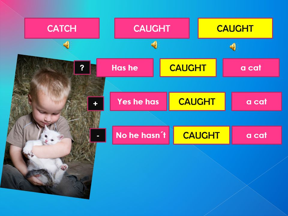 CATCHCAUGHT Has hea cat CAUGHT - + ? Yes he has CAUGHT a cat No he hasn´t CAUGHT a cat