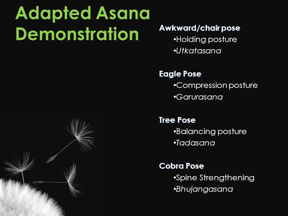 Adapted Asana Demonstration Awkward/chair pose Holding posture Utkatasana Eagle Pose Compression posture Garurasana Tree Pose Balancing posture Tadasana Cobra Pose Spine Strengthening Bhujangasana