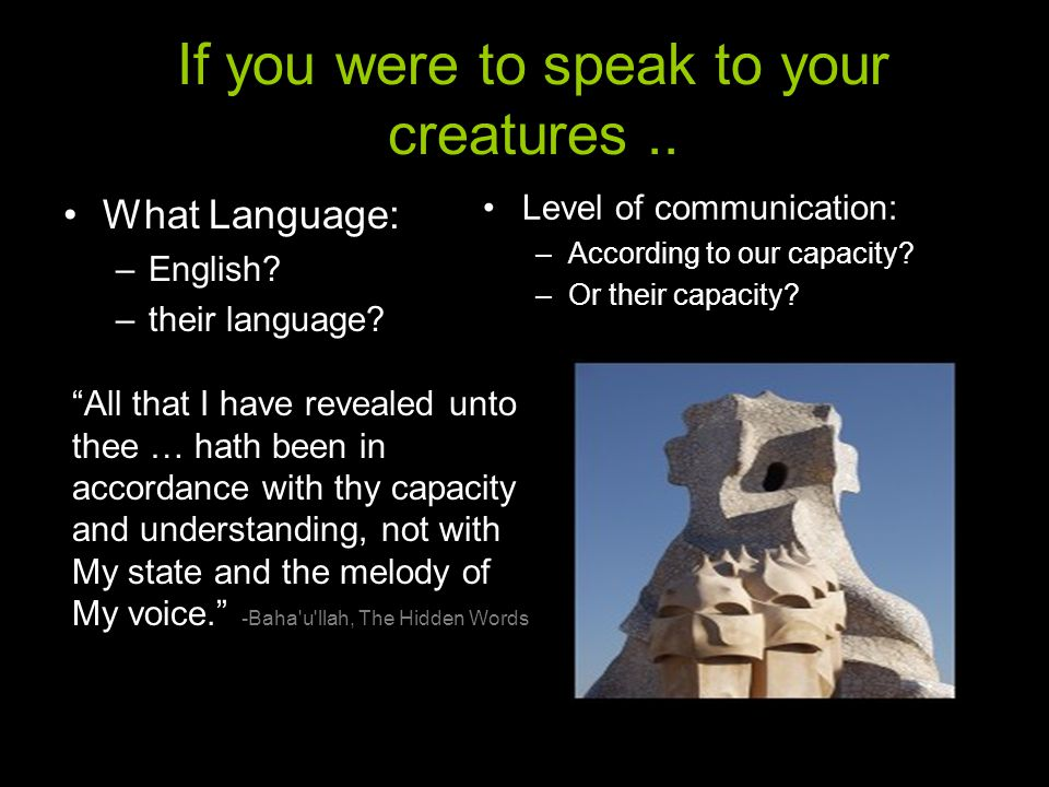If you were to speak to your creatures.. What Language: –English.