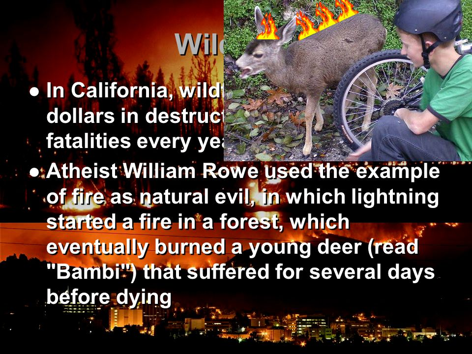 Wildfires In California, wildfires cause millions of dollars in destruction and usually a few fatalities every year Atheist William Rowe used the example of fire as natural evil, in which lightning started a fire in a forest, which eventually burned a young deer (read Bambi ) that suffered for several days before dying In California, wildfires cause millions of dollars in destruction and usually a few fatalities every year Atheist William Rowe used the example of fire as natural evil, in which lightning started a fire in a forest, which eventually burned a young deer (read Bambi ) that suffered for several days before dying