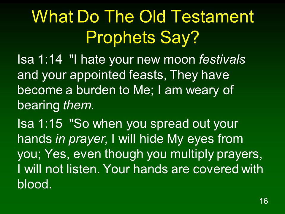 16 What Do The Old Testament Prophets Say.